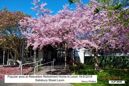 HJ P0048 Popular area at Reevedon retirement Home Salisbury Street Levin 19-9-2018