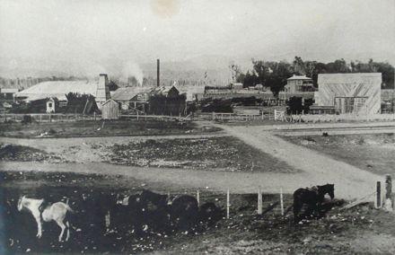 Prouse Sawmill 1895 - future H.E.P.B. depot area