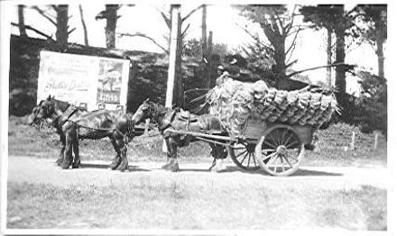 Arthur and Jack Rouse Carting Fibre