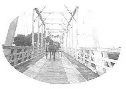 Shannon - Moutoa Bridge