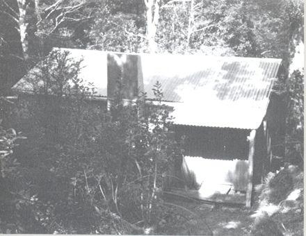 Ohau Hut in Tararua Range, 1981