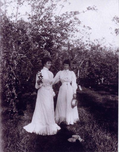 Newton Sisters, Shannon, 1900