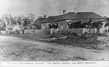 Buildings, Weraroa Experimental Station