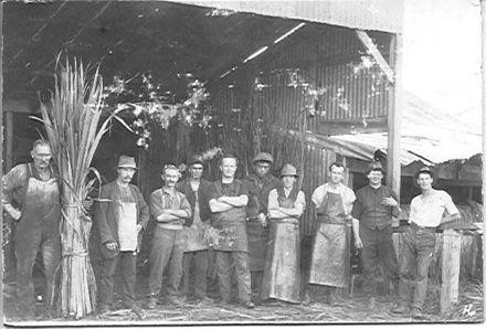 """Flaxies"" at Berrys Mill"