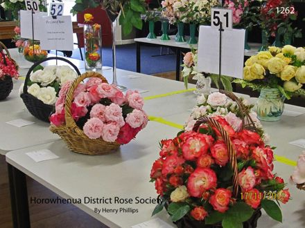 IMG_1262 Horowhenua District Rose Society