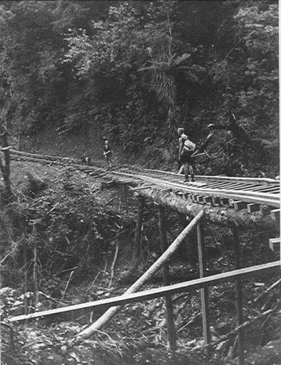 Tramline to Corrigan's Mill, Waitatapia Valley