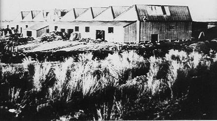 'Miranui' Mill, Shannon c. 1907