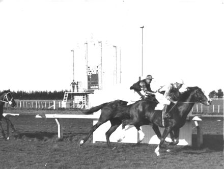 Racehorse 'Gay Boy' Winning at the Marton Races, c.1930