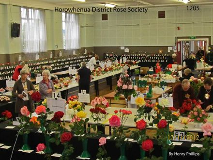 IMG_1205 Horowhenua District Rose Society