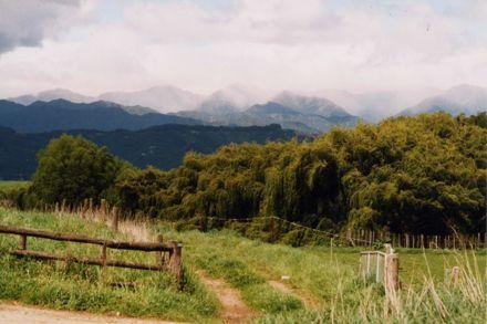 Tararua Ranges from Kawiu Road