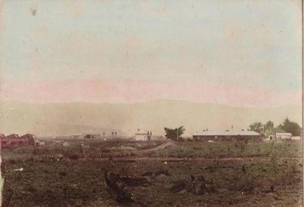 Miranui,  Shannon, 1911