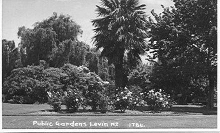 Public Gardens, Cambridge Street / Bath Street Levin
