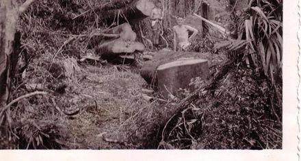 Clearing the bush track, October 1936