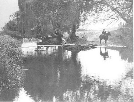 Maud Herd, Hokio Stream, 1913