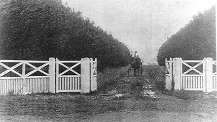 Main Gate, Weraroa Experimental Station