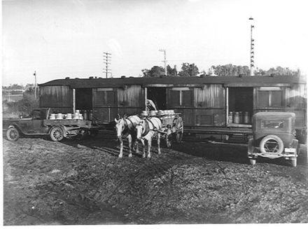 Loading milk cans into railway van, Manakau