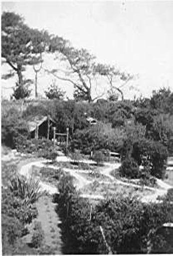 Seaview Gardens, Foxton