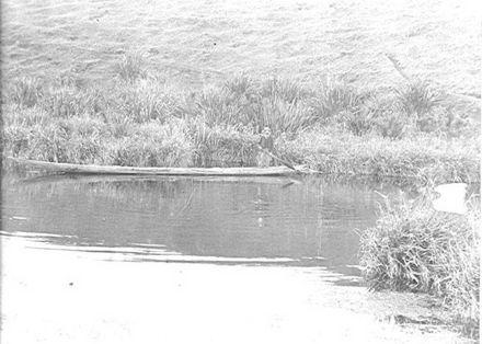 Hokio Stream, H.H. McDonald in Maori canoe