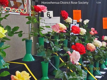 IMG_1234 Horowhenua District Rose Society