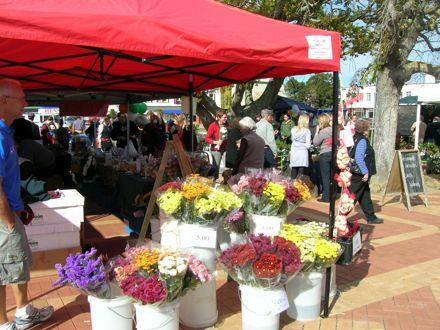 Feilding Farmers Market