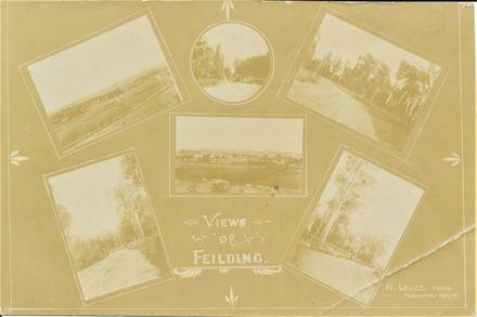 Views of Feilding