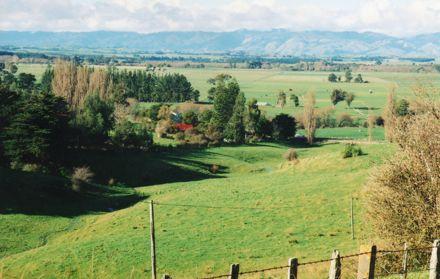 Colyton Road
