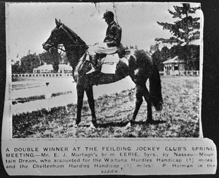 Double Winner at Feilding Jockey Club